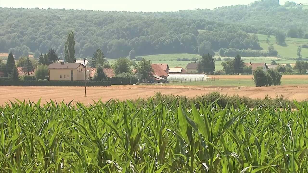 Številni ukrepi tudi za kmetijstvo