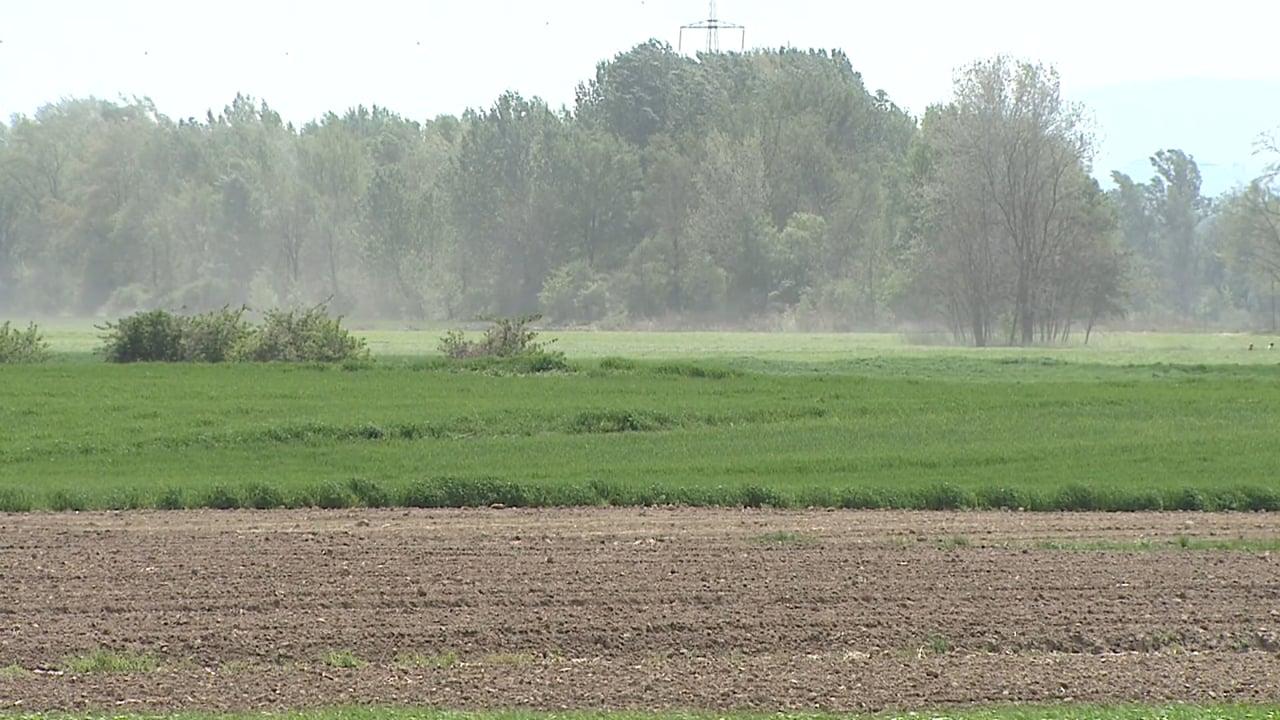 Suša oklestila pridelek za najmanj 20 odstotkov