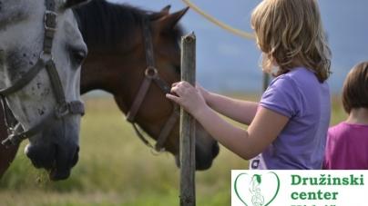 Počitnice med konji