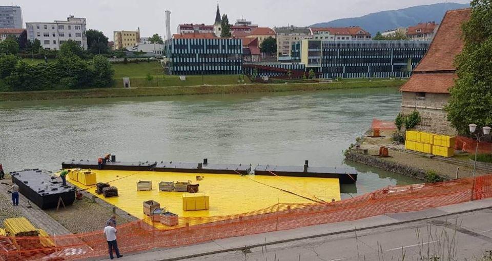 Ministrstvo o usodi odra na Dravi