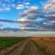 Za razvoj podeželja namenjenih 1,1 milijarde evrov