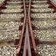 Novi železniški tiri do Magne in letališča