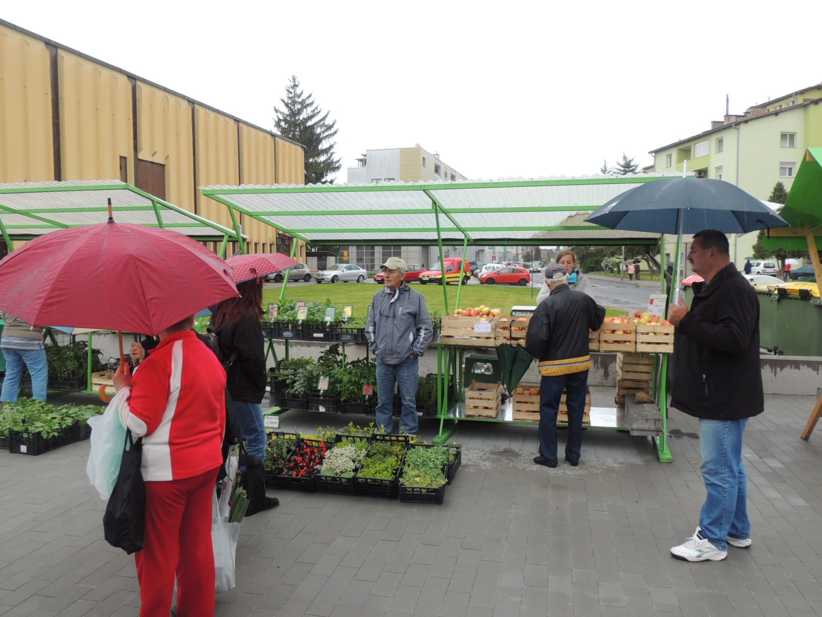 Zelena japka, trgovina brez plastične embalaže