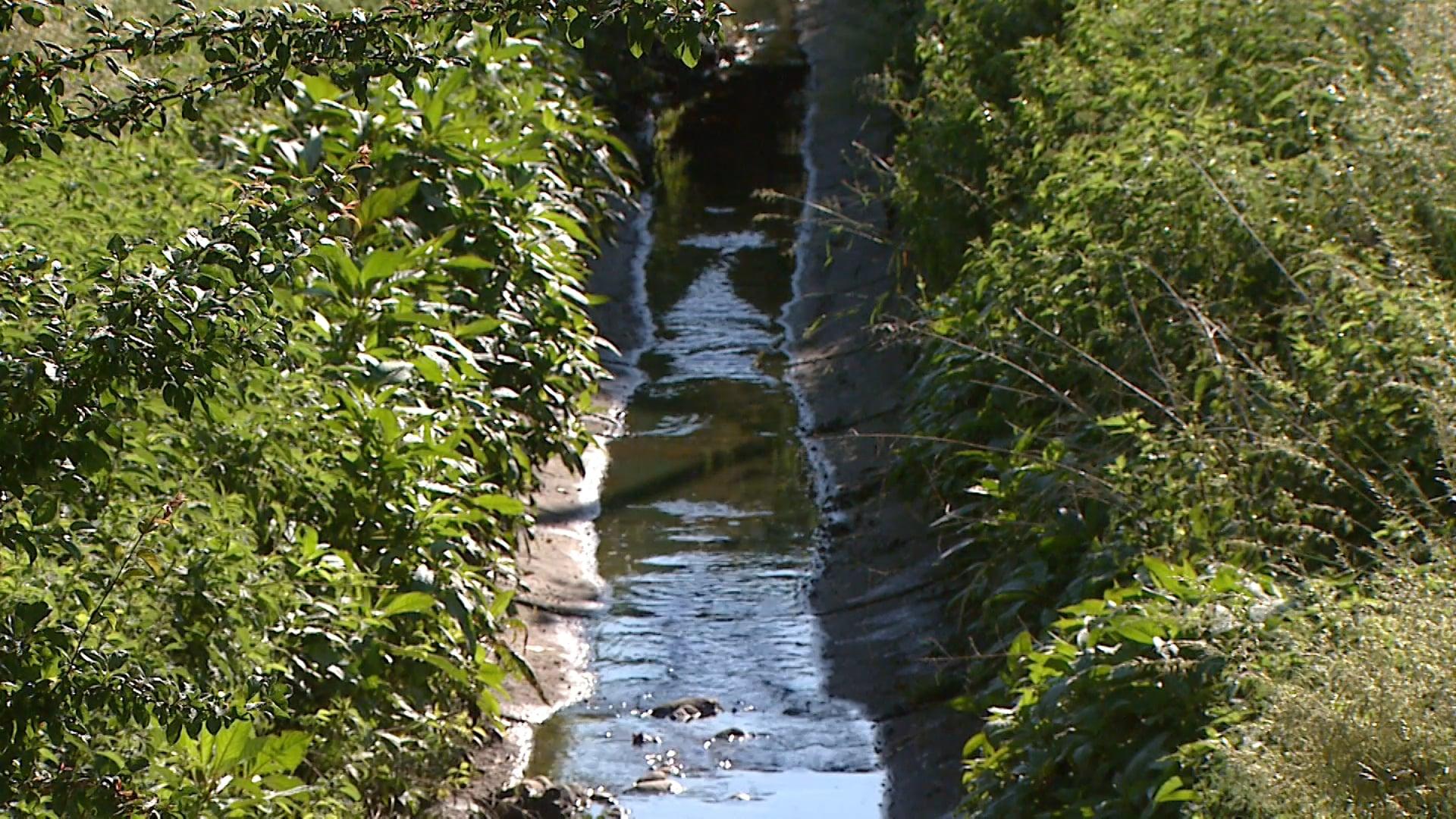Stražunski potok pušča sledi fekalij