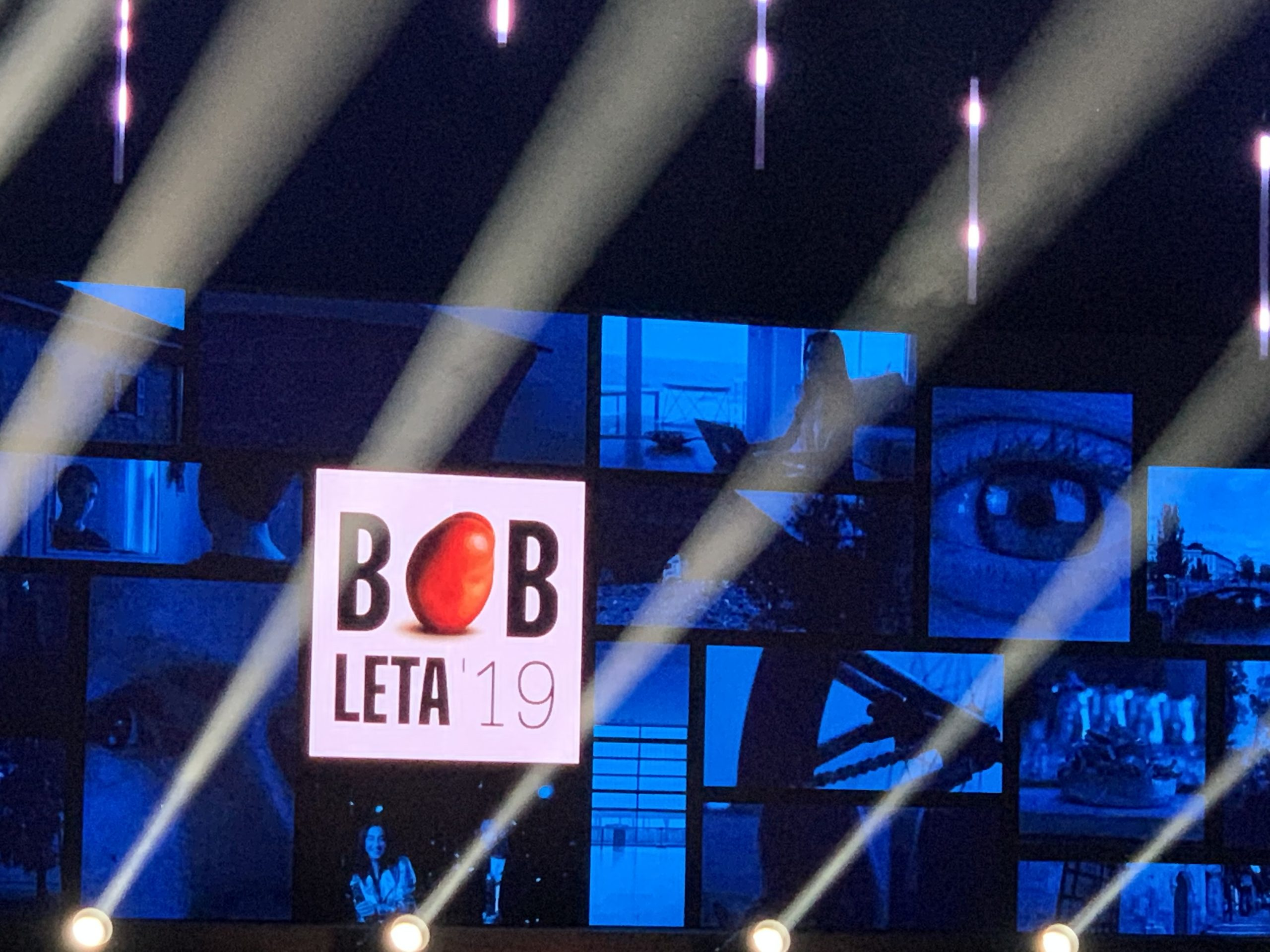 Bob leta Ninni Kozorog