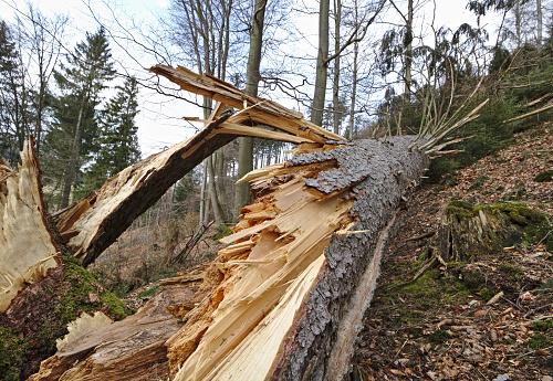 Vetrolom povzročil za več kot 150.000 evrov škode