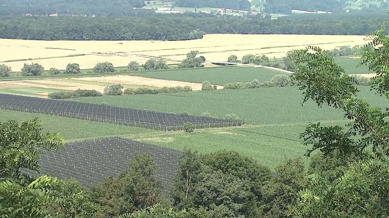 EU zahteva vrnjen denar za slovenske kmetovalce