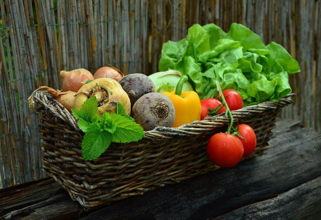 ZPS: Analiza zelenjave v spletnih trgovinah