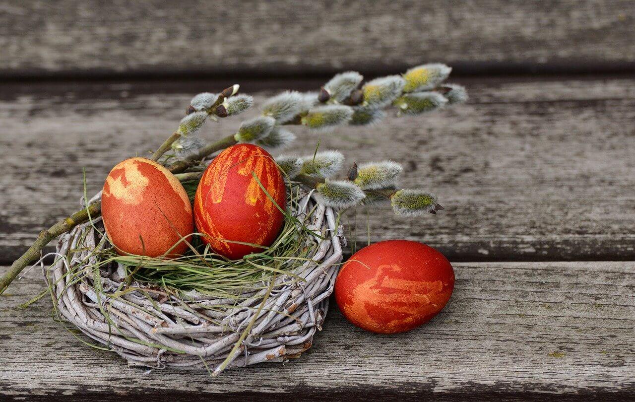 Cvetna nedelja letos brez blagoslova zelenja