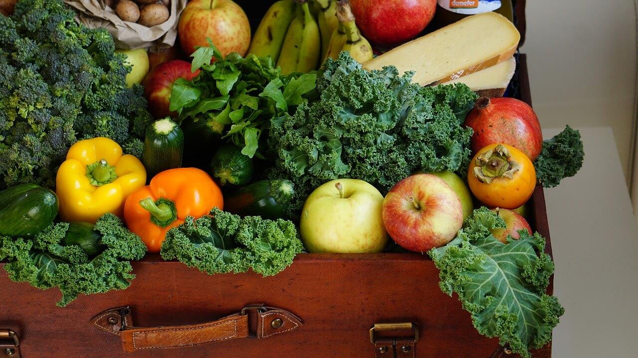Trajnostno prehranjevanje ključno za zdravje in kmetijstvo
