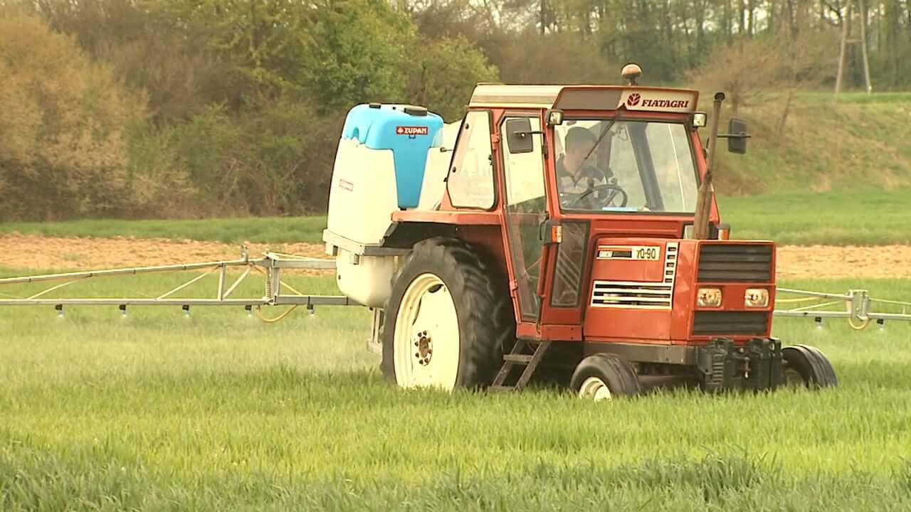 Kam s presežki slovenskih kmetijskih proizvodov?