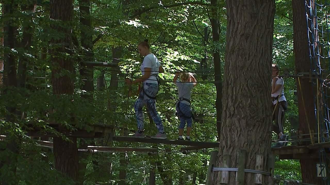 Pustolovski park v Betnavskem gozdu še vedno zelo priljubljen